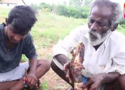 看看印度老大爷如何烤全羊,和孩子们一起吃,大口吃肉感觉好爽.