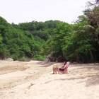 海边度假必备神器 躺着就能喝椰汁 #歪果仁真会玩##生活#懒人必备##