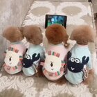 #宠物#四个宝贝排排队看什么呢🙈🙈童年你们最喜欢看什么动画片啊,丘麻喜欢看美少女战士哈哈😄