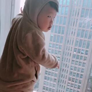 #萌宝宝#一只小熊的回眸😊