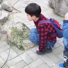 #一步一年##年 三岁##日志#动物园半日游~