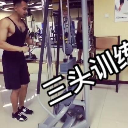 加上三头的训练手臂才会更加饱满!#运动##健身##美拍运动季#@美拍小助手 @美拍娱乐