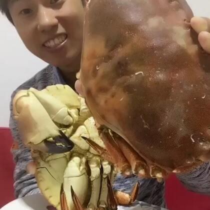 我这个点放点毒不算太晚吧?#螃蟹季花样吃法##吃秀#