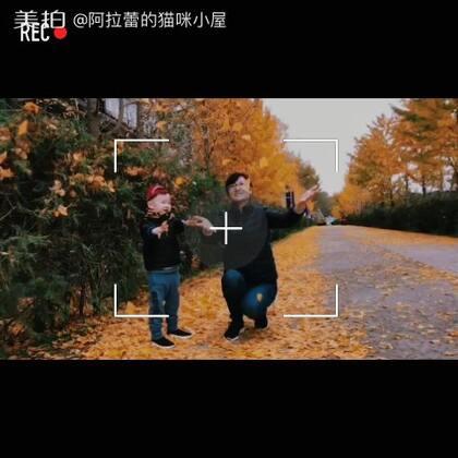 北京的秋天最美了🍁🍂#帅帅成长记##宝宝##北京的秋天#