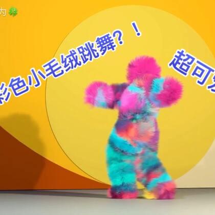不同材质的系列舞蹈(二)这次是毛茸茸的 很可爱 你们喜欢么?后面还有下集预告喔!喜欢记得点赞 😎#舞蹈##创意特效##我要上热门@美拍小助手#