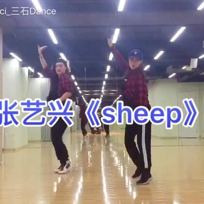 记录一下 我和 @舞林大会园园 的双人 #张艺兴sheep舞# 顺便说一句美拍里有完整版镜面分解哦😝 #sheep##舞蹈#