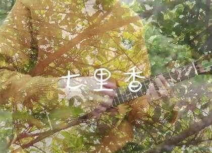 <七里香>这首经典指弹,带你坐上回到夏天的时光机 曲谱在公号【趣弹音乐】获取哟~ #尤克里里##周杰伦#
