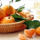 #美食#话说那天为了拍视频特意去买橘子,我专挑带叶子的橘子,老板笑眯眯地接过橘子,他心里肯定在想,这样的傻逼怎么不多来几个😂本期视频福利抽一位小可爱送百元现金红包,抽奖规则戳这里https://college.meipai.com/welfare/6500cd7299039327#卷出来的美味#