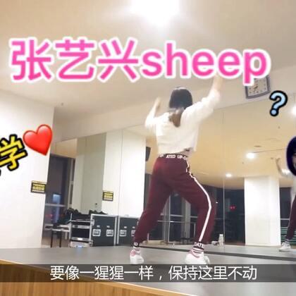 #张艺兴sheep舞#老张sheep良心的#舞蹈教学#来啦❤ 喜欢赶快学习来 哈哈哈 微信nana08200