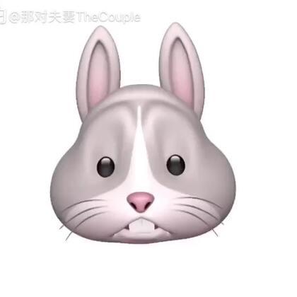 哈哈兔子翻白眼~看看kim唱的多陶醉~有點欠揍