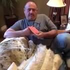 这位父亲在失去了自己最爱的两只狗狗Nemo和Lucy后,一直闷闷不乐。今年他生日这天,孩子们给他带来了一只小奶汪Lumo,希望重新把快乐和开心带回爸爸的生活。这个大男人在看到贺卡的瞬间就抑制不住自己情绪了,希望爸爸和Lumo能互相陪伴着开开心心的吧