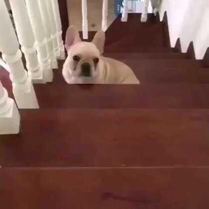哈哈哈哈 😂😂😂😂😂😂