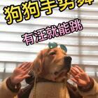 神金舞团开业了、大家快来围观了😂😂#how long##宠物##精选#@美拍小助手 @宠物频道官方账号