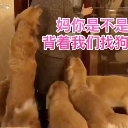 这条视频叫:妈妈回来啦~☺☺#宠物#@美拍小助手 @宠物频道官方账号