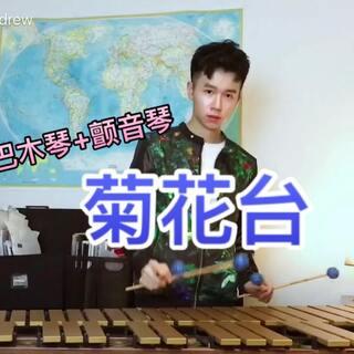 【流行马林巴】《菊花台》#音乐##马林巴木琴##周杰伦#