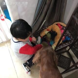 #精选##宝宝频道精选视频##自制宠物精选#