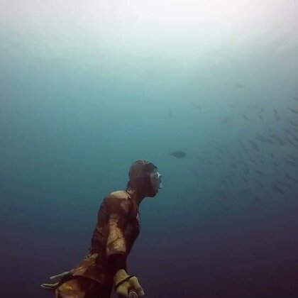 我在这里等你来 #自由潜水#