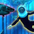 我居然在水下跟大鲨鱼待在一起了,你们想象一下如果我被它咬了,这个视频点击量得有多高!#热门##搞笑#