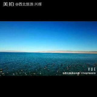 世界那么大,带你看个鸟……#青海湖##青海湖航拍##航拍#