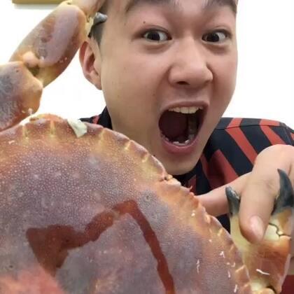 每年的面包蟹在这个时候是最肥的,一个1.4-1.6斤左右,我真的吃一个面包蟹有点费力,不知道有没有勇士想挑战的😍😍挑战热线在这里http://item.taobao.com/item.htm?id=562584131877😛😛 #吃秀##热门#