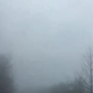 #大雾##在路上#