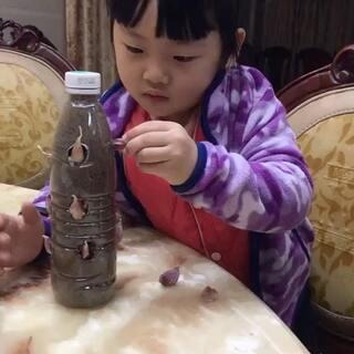 先艾叶洗干净,烧一锅开水,在这期间调馅白糖,芝米蕾黑化图片