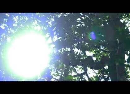 疯狂系列短片 🔺 热心助人🔺 好心到底有没有好报 到底之中有什么样的误会 到底是谁的错 #在不疯狂就等死##古拉##唐婷婷##本烫##治胃#