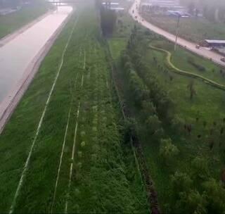 航拍保定唐县绿化建设,空气清新,未来城市的标准!#航拍#