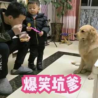 #宠物##宝宝#😂😂😂