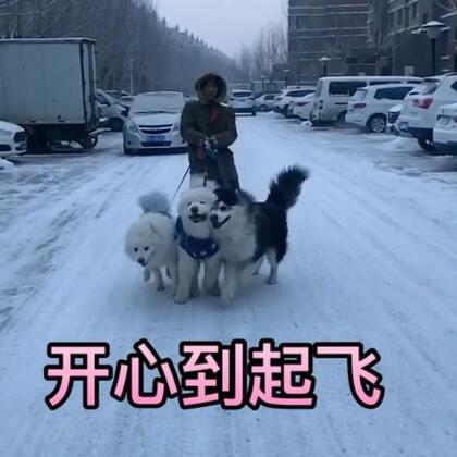 冬天与你们更配哟~#宠物#