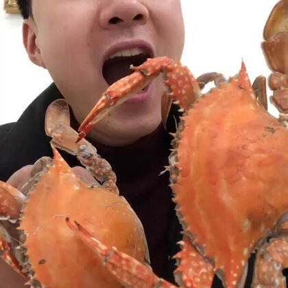 个人爱好之一:没事搞几个梭子蟹磨磨牙😍😍#吃秀##热门#有没有老铁牙齿需要磨的😛😛