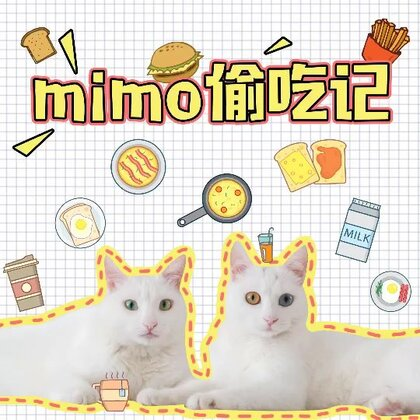 mimo: 为了吃个肉条,朕容易嘛!! ✨关注并转赞评本条,下周抽两位送出猫咪帆布包✨#宠物##mimo##萌宠#