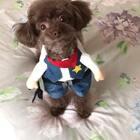 #宠物#哈哈小牛仔罢工啦😂😂再拍我就跑啦🏃♂️养宠物有问题了加微信哦:douchai4725