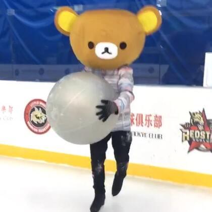 #精选##搞笑#哈哈😄蠢萌熊又来了