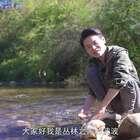 【丛林之家】小伙用3000米海拔的山鸡,把肉切片用骨头煲汤,味道好极了!