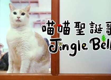 """【喵喵聖誕歌!Jingle Bells!】阿瑪:「來聽我們唱歌吧!喵喵歌!」(抽獎活動在奴才的微博""""志銘與狸貓"""")"""