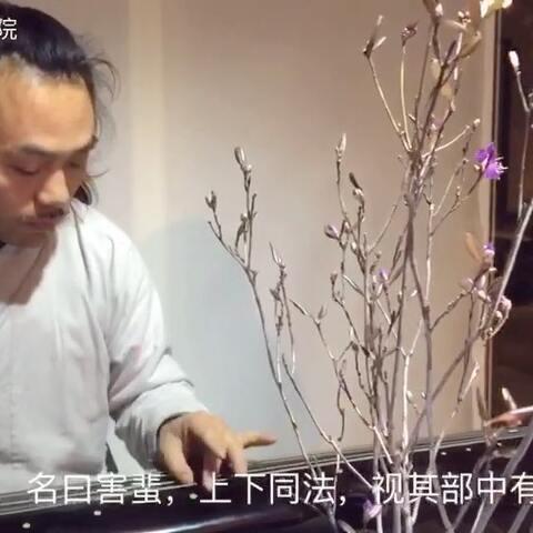 【秀秀书院美拍】茶道养生课:黄帝内经 素问 皮部...