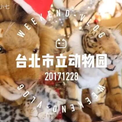 """带熙熙去了台北市立动物园#熙游记#主要去看看我国大猫熊""""团团圆圆""""🐼这可是两岸的团圆萌物啊😝#r熙37个月#+10#寶寶#"""
