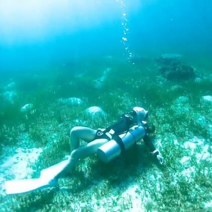 2017最后一天,好好怀念下温暖的海岛拍摄😏#一起去旅行#2018要一起同行吗?#水下摄影##潜水#