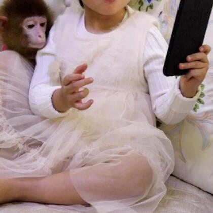 自拍#宝宝##宠物##精选#@美拍小助手