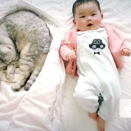 来快速回顾下我们小铲屎官和慕斯法派的2017吧😬#宠物#宠物和宝宝其实不冲突 注意两者的度就行,家长也应该陪同看管好,以免发生意外。我们家实际猫是不太上床的 我女儿喜欢吃床单睡觉,视频中只是个例@Bailyn.贝灵
