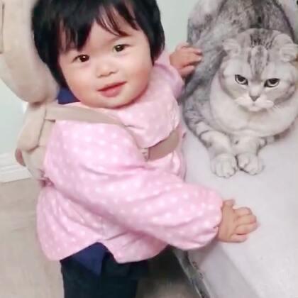 https://item.taobao.com/item.htm?id=563624047269 分装猫粮啦,我们贝灵特别忙😂#宠物##宝宝#