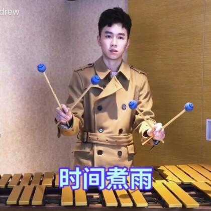 小时代主题曲《时间煮雨》颤音琴与马林巴木琴双乐器演奏版 #U乐国际娱乐##马林巴木琴##时间煮雨#