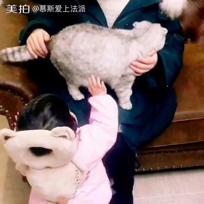 😁😁😁抱谁好呢#宠物##宝宝#