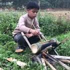 今天来做个竹子火锅#美食#