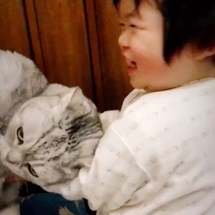 不舍得赶法派下去 就让小恶魔来吧😂😂😂看把法派吓的哆嗦哆嗦的😂😂#宠物##宝宝#