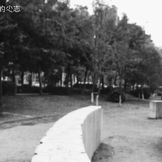 【卡】 桂林跑酷BOY菜鸟小志 - LIU #跑酷##运动#