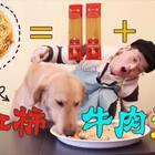 西红柿牛肉意面!我们的东西开始吃西餐啦!两包意大利面条!让你吃着爽看着饿!#宠物##吃秀##大胃王#
