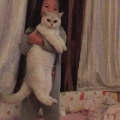 哈哈哈哈哈,我猫一天天也不容易。可是不得不说,我咩好像有一种魔力,动物都对她特别好,这要换别人这么抱,小哇早挠人了😂😂#宠物##猫咪#