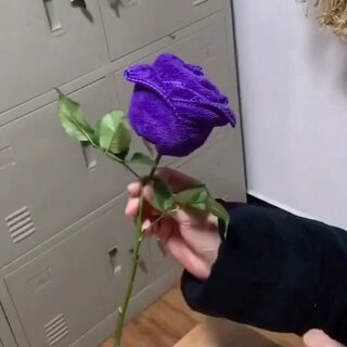 如何用毛巾叠出一朵玫瑰!👍#涨姿势#